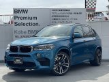 BMW X5 BASE GREAD